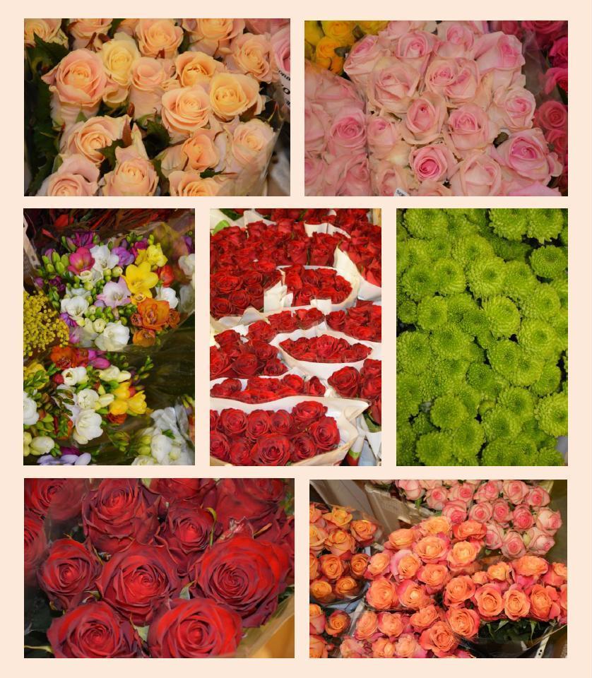Walentynkowa Oferta Na Hali Kwiatowej B I B1 Lrh Elizowka